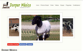 Desarrollo Web dorpermexico.com.mx